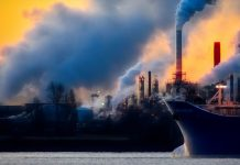 Contaminación del aire está dañando nuestra inteligencia y nuestra salud