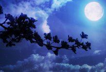 China lanzará una luna artificial al espacio para reemplazar las luces callejeras