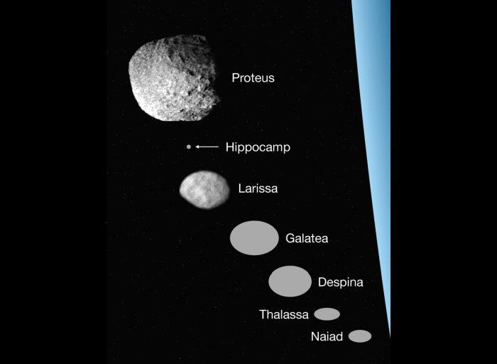 Una comparación de tamaño de las 7 lunas interiores de Neptuno