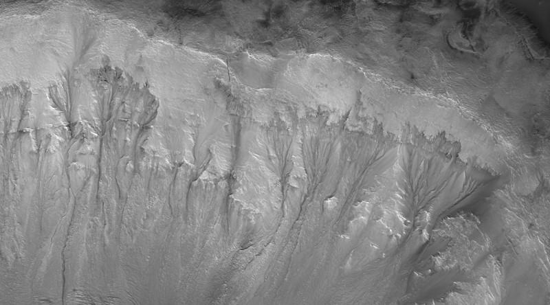 Pendiente que muestra marcas de agua en las paredes del cráter Palikir en Marte