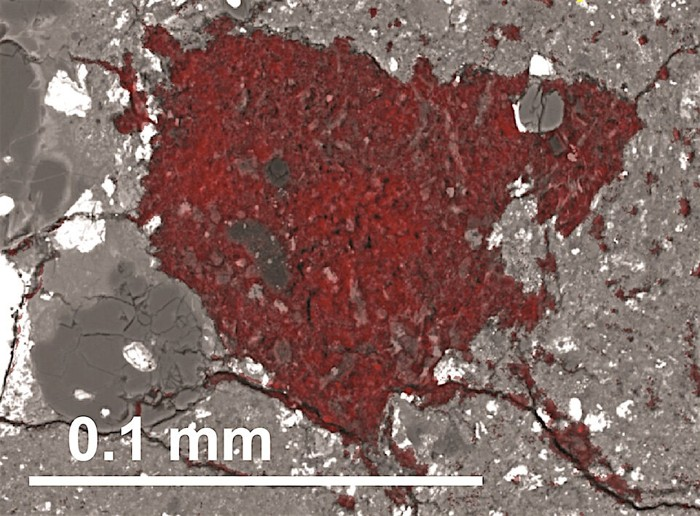 El fragmento rico en carbono de los cometas materiales se construye a partir de un color rojo en esta imagen de microscopio electrónico de barrido. La barra de escala muestra su tamaño