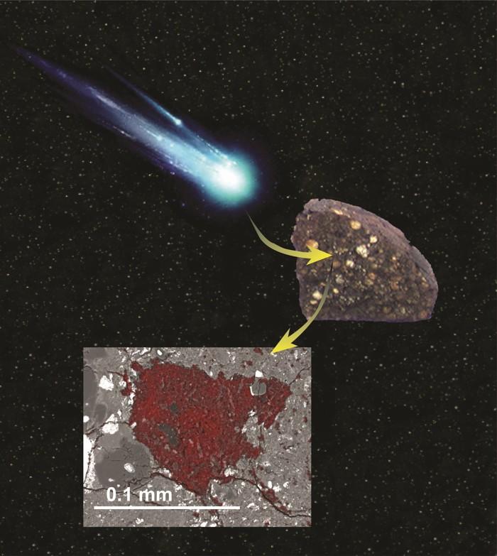 Una ilustración que muestra cómo un asteroide se tragó una porción de material de bloques de construcción cometarios y se conservó dentro de un meteorito, donde fue descubierto por un equipo de científicos liderado por Carnegie